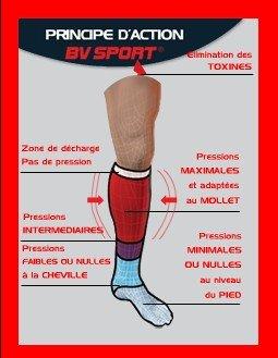 bvsport.jpg